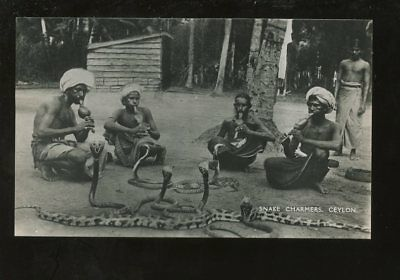 CEYLON c1930 PPC...REAL PHOTO...SNAKE CHARMERS