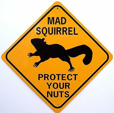 MAD SQUIRREL PROTECT YOUR NUTS   XING Style Aluminum Sign  Won't rust or fade