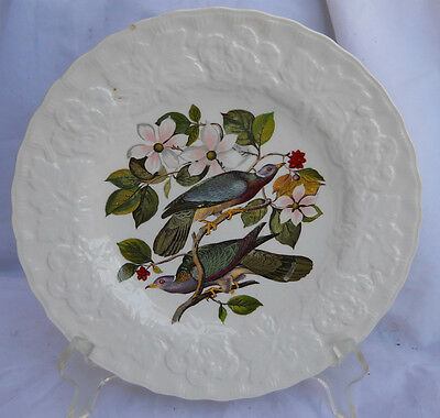 ALFRED MEAKIN BIRDS OF AMERICA LUNCHEON PLATE BAND TAILED PIGEON #367