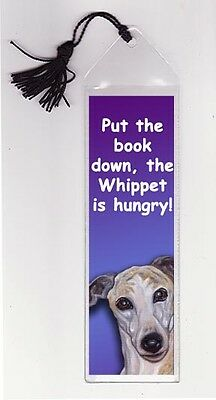 WHIPPET is Hungry BOOKMARK Mini Dog Art PRINT from Original Painting by VERN