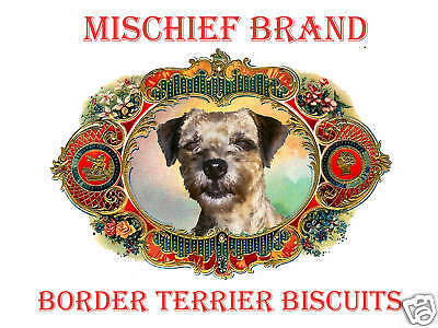 Border  Terrier  Mischief Brand Biscuit Tin & Cookies