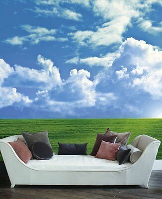 Cloudy sky in the valley-Wall Mural-9'wide by 8'high
