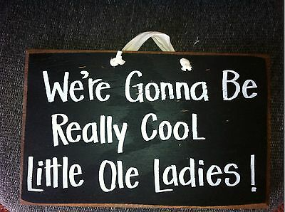 We're Gonna Be Really Cool Little ole Ladies silly sign