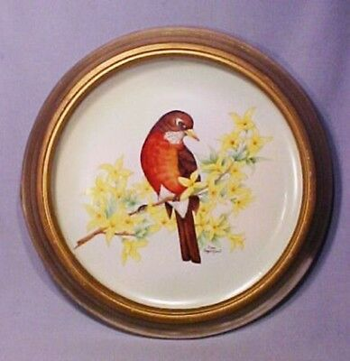 Hand Painted Original Signed Robin Bird Framed Porcelain Plate - Gorgeous!
