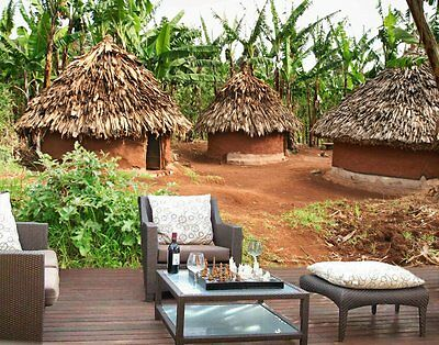 African Huts-12'W by 8'H-Wall Mural