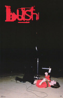 Poster: Music: Bush - Gavin Rossdale  Live -On His Back  Free Ship  #6170 Rc40 P