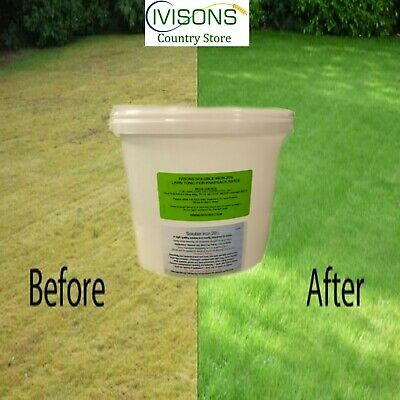 Ivisons Moss Killer & Lawn Tonic As Used By The Professionals 5000 M2 Coverage
