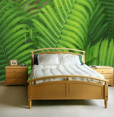 Ferns-Wall Mural-12'wide by 8'high