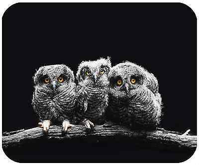 Mouse Pad Custom Personalized Thick Mousepad-Baby Owls - Add Any Text Free