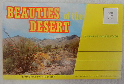 Beauties Of The Desert - 1958 Vintage Curt Teich Fold-Out Postcard