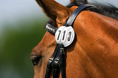 Competition Equipment - Round Starting Numbers Bridle Badge/Disc