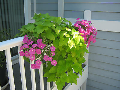 "Deck Porch or Balcony railing planters  24""-60"" long, Great for apartment/condos"