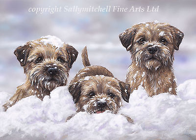 The Snow Borders, dog Christmas cards pack of 10 by Paul Doyle C407x