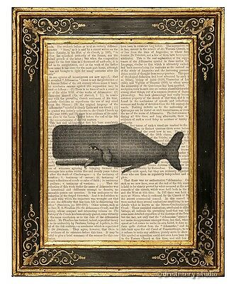 Whale Art Print on Antique Book Page Vintage Illustration
