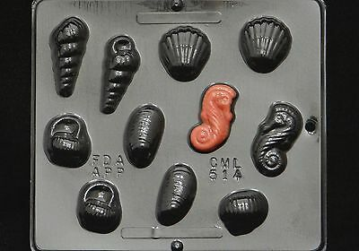 Sea Shell Assortment Chocolate Candy Mold 514 NEW