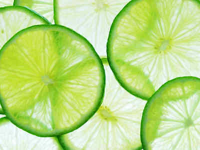 Lime Slice-Wall Mural-10.5'wide by 8'high