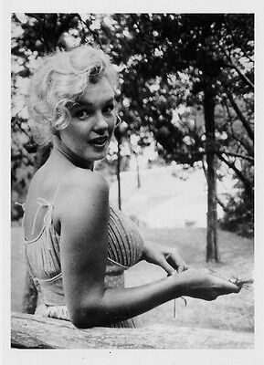 Marilyn Monroe photo by Sam Shaw American Actress Hollywood POSTCARD