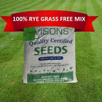 Luxury Grass Seed Lawn Seed Pristine Fine Front Lawn Rye  Grass Certified Seeds