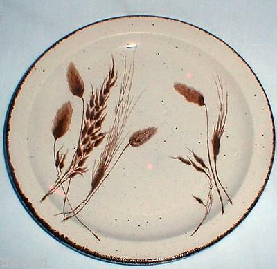 MIDWINTER WILD OATS DINNER PLATE OR PLATES