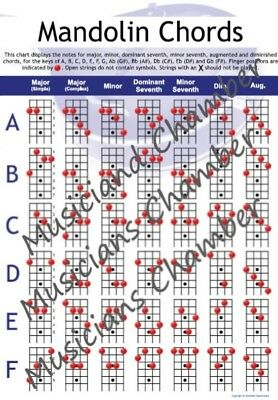 Mandolin Chord Chart - Acoustic and Electric - A4 - NEW