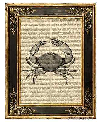 Stone Crab Art Print on Vintage Book Page Home Kitchen Hanging Decor Gifts