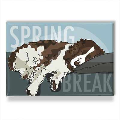 Springer Spaniel Gifts Refrigerator Magnets with Funny Sayings - Spring Break