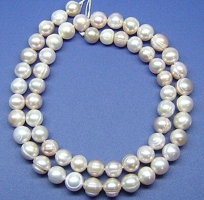 """16"""" WHITE Freshwater Pearl FWP Round Button ~60 Beads 8mm P19"""