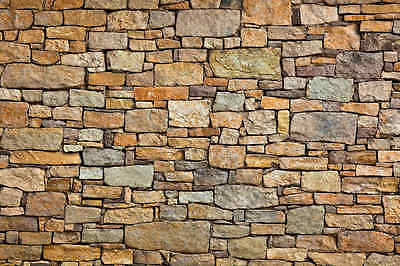 Brown Stone Wall-Wall Mural-12'wide by 8'high