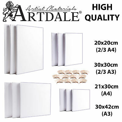 Artdale 12 Pack Blank Canvas Acrylic Primed Stretched Cotton Artists Art Craft