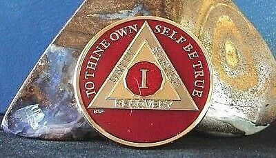 Red Alcoholics Anonymous 1 Year AA Medallion Coin Chip Token Sobriety Sober