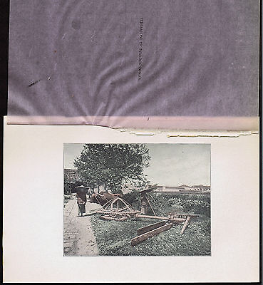 Irrigation by Bullock Power in China - 1902 Lithograph