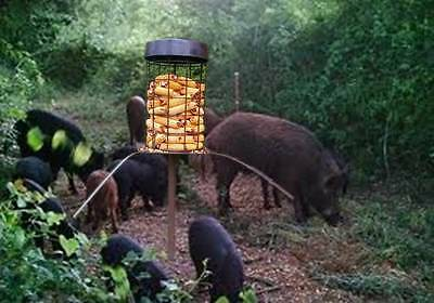 Wild Boar & Hog Hunting Feeder - Up to 45 Days Without a Refill Saves Money