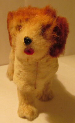 Cavalier King Charles Spaniel W. Germany 1960s Soft Fur