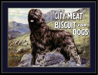 English Picture Print Briard Dog Biscuit Advertisement Art Vintage Poster