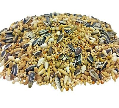 COCKATIEL & PARAKEET - (500g - 20kg) - Exotic Lovebird Caged Bird Seed bp Food k