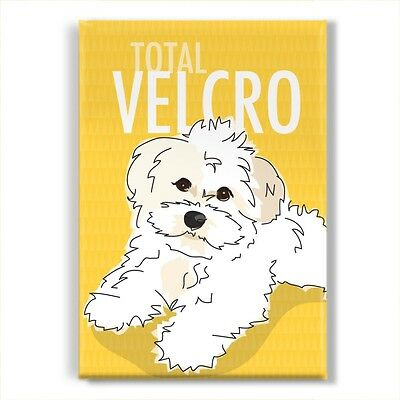 White Havanese Gifts Refrigerator Magnets with Cute Sayings - Total Velcro