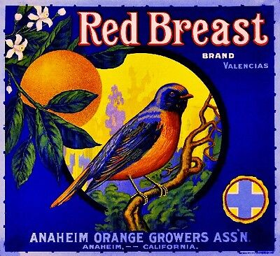 Anaheim Red Breast Bluebird Bird Orange Citrus Fruit Crate Label Art Print