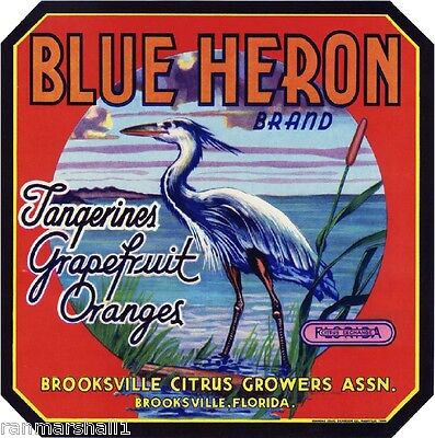 Brooksville Florida Blue Heron #1 Orange Citrus Fruit Crate Label Art Print