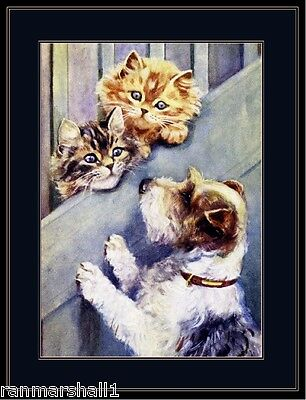 English Picture Print Wire Fox Terrier Puppy Dog Kitten Cats Poster