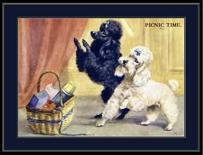 English Picture Print Pet Poodle Dog Duo Art