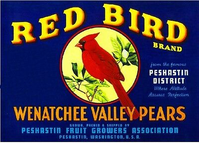 Peshastin Washington Red Cardinal Bird Pear Fruit Crate Label Art Print