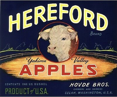 Selah Washington Hereford Cow Apple Fruit Crate Label Vintage Art Print