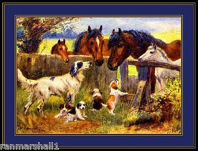Picture Print English Setter Dog Puppies Horses Dogs Puppy Vintage Poster Art