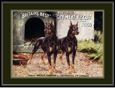 English Print Doberman Pinscher Dog Dogs Puppy Biscuit Advertisement Art Poster