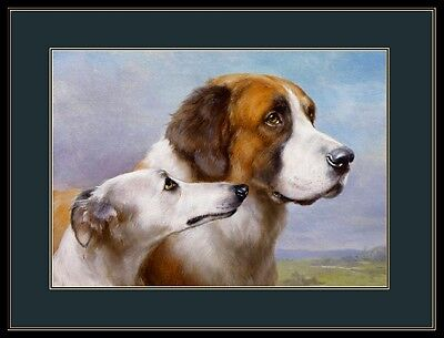 English Picture Print St. Saint Bernard Whippet Dog Art