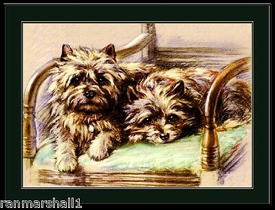 English Picture Poster Print Cairn Terrier Duo Puppy Dog Dogs Puppies Art