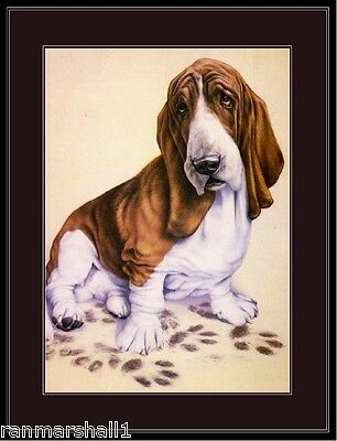 Vintage English Print Basset Hound Dog Puppy Dogs Puppies Art Picture Poster