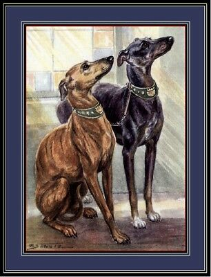 English Print Pet Whippet Dog Duo Art Picture