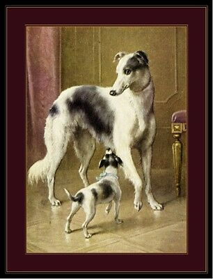 English Print Borzoi Dog Dogs Puppy Puppies Jack Russell Art Vintage Poster