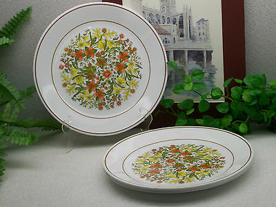 Lot of 4 Corelle Corning Ware INDIAN SUMMER Dinner Plates EXCELLENT !